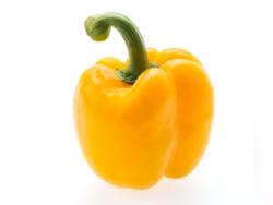 MC Bros Fruit and Vegetable Wholesalers Port Elizabeth