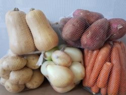 Vegetable Wholesalers Port Elizabeth | MC Bros Fruit & Vegetable Wholesalers