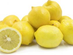 Fruit Wholesalers Port Elizabeth | MC Bros Fruit & Vegetable Wholesalers